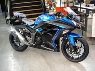2015Kawasaki Ninja250 Special Editionブルー