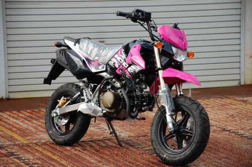 s_pink1.jpg